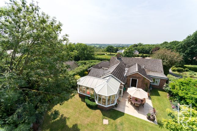 Thumbnail Bungalow for sale in Newbridge Hill, West Bergholt, Colchester