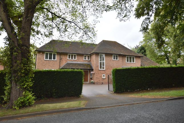 Thumbnail Detached house for sale in Broadway, Duffield, Belper