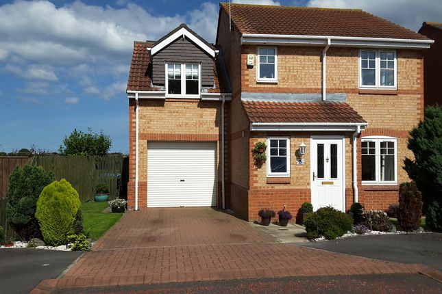 Thumbnail Detached house for sale in The Paddock, Seaton Delaval, Whitley Bay