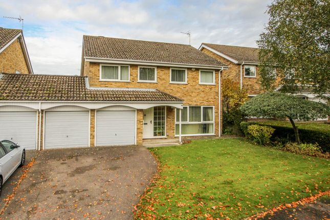 Thumbnail Link-detached house for sale in Beechwood Close, Exning, Newmarket