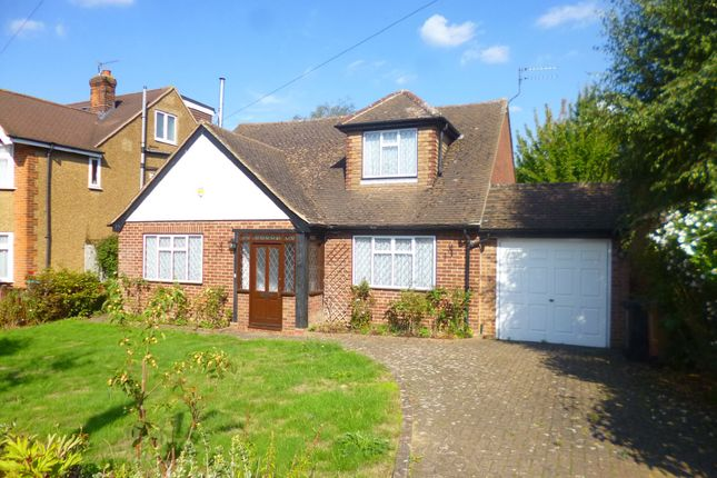 Thumbnail Detached bungalow to rent in Holloways Lane, North Mymms, Hatfield