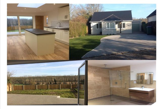 Thumbnail Detached bungalow for sale in Silverside, High Street, Elham, Canterbury