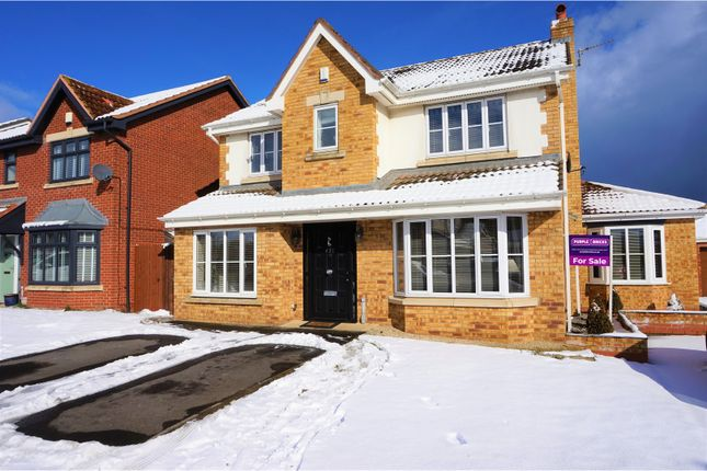 Thumbnail Detached house for sale in Forester Close, Hartlepool