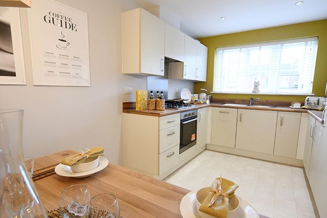 """3 bedroom property for sale in """"The Larch"""" at St. Marys Terrace, Coxhoe, Durham"""