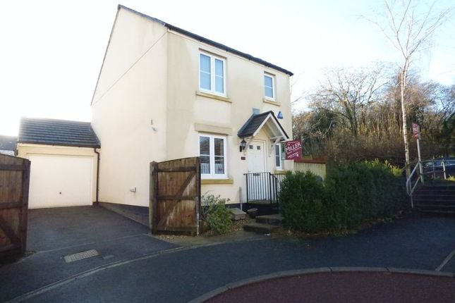 Thumbnail Detached house for sale in Kestrel Park, Whitchurch, Tavistock