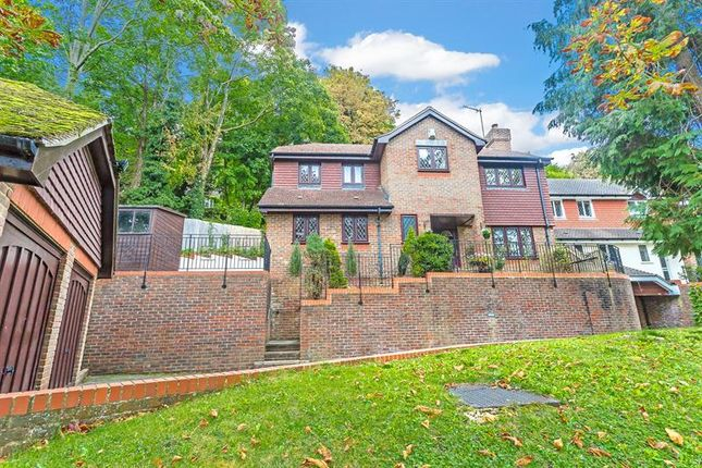 Thumbnail Detached house for sale in Crescent Road, Caterham