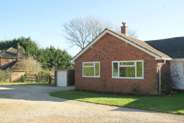 Thumbnail Bungalow to rent in Blendworth, Waterlooville