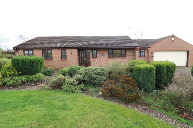 Thumbnail Detached bungalow to rent in The Headlands, Kirkfield Lane, Thorner
