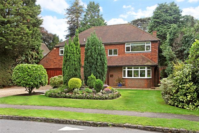 Thumbnail Detached house for sale in High Pine Close, Weybridge, Surrey