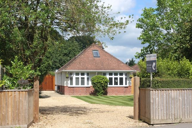Thumbnail Property for sale in Bashley Road, Bashley, New Milton