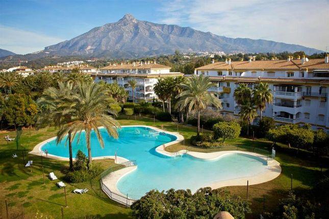 Picture No. 07 of Nueva Andalucia, Marbella, Malaga, Spain