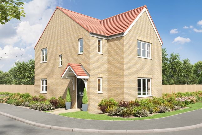 """Thumbnail Detached house for sale in """"The Sherwood Corner"""" at Summerhouse, Ashington"""