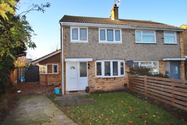 Thumbnail Semi-detached house to rent in Ash Close, Broadstairs