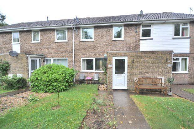 Thumbnail Property to rent in Bramhall Rise, Northampton