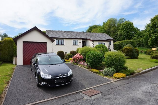 Thumbnail Detached bungalow for sale in Llanwenog, Ceridigion