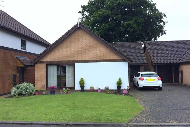 Thumbnail Detached bungalow to rent in Langden Fold, Grimsargh, Preston