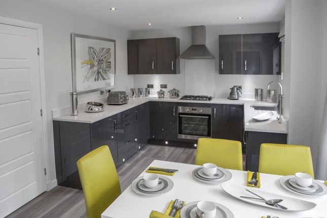 "Thumbnail Detached house for sale in ""Delgattie"" at Greystone Road, Kemnay, Inverurie"