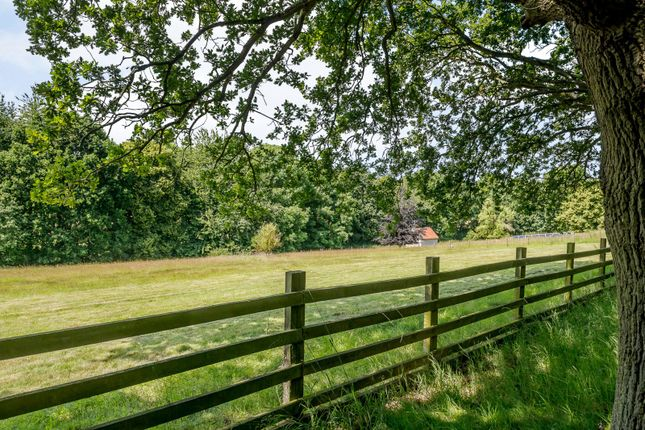 Paddock of Grove Hill, Dedham, Colchester CO7