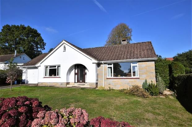 Thumbnail Detached bungalow for sale in Eastfield, West Hill, Ottery St. Mary, Devon