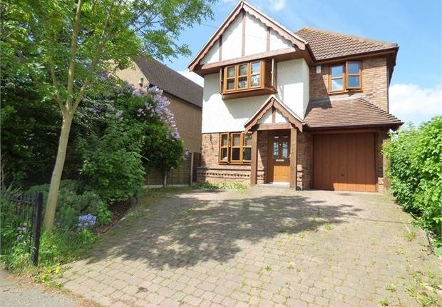 Thumbnail Detached house for sale in Helena Road, Rayleigh, Rayleigh