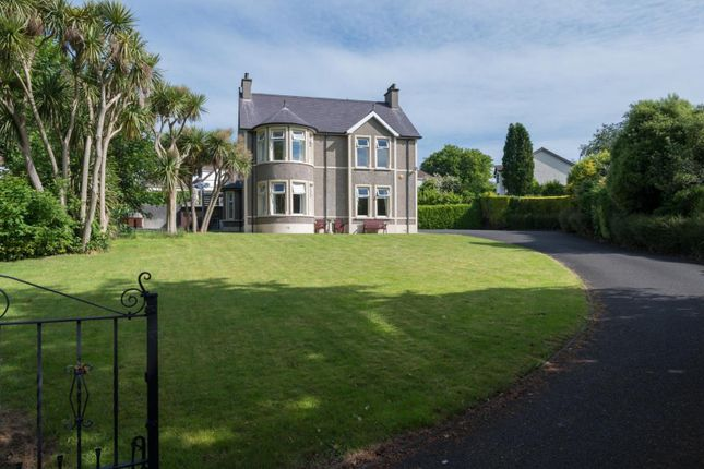 Thumbnail Property for sale in 111 The Roddens, Larne, County Antrim