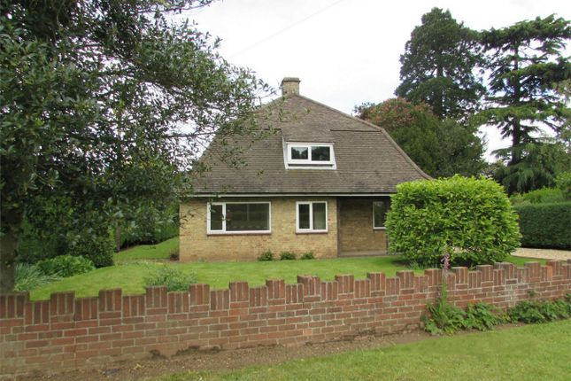 Thumbnail Detached bungalow to rent in Huntingdon Road, Brampton, Huntingdon