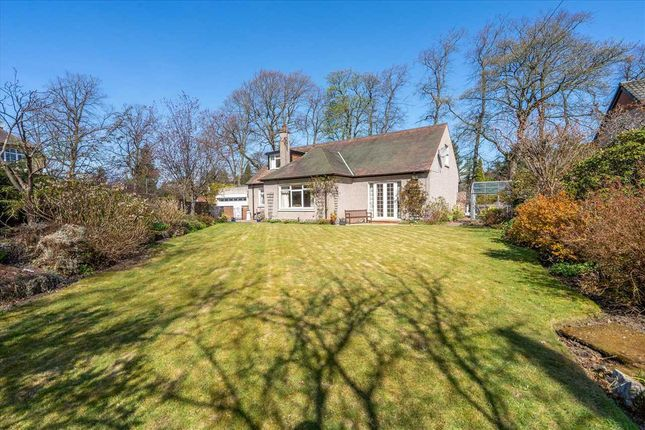 Thumbnail Detached house for sale in Camelon Road, Falkirk