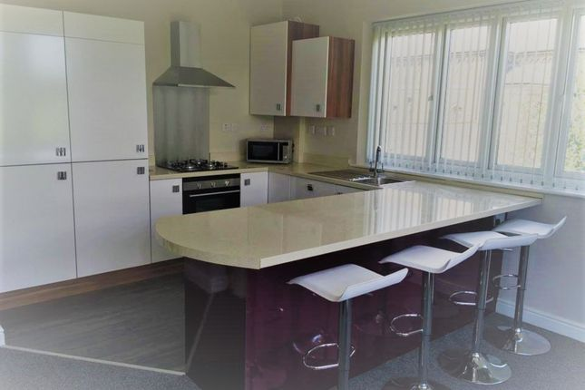 Thumbnail Shared accommodation to rent in Park Road South, Middlesbrough