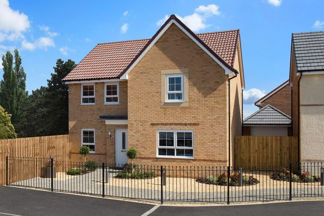 "Thumbnail Detached house for sale in ""Radleigh"" at Bankwood Crescent, New Rossington, Doncaster"