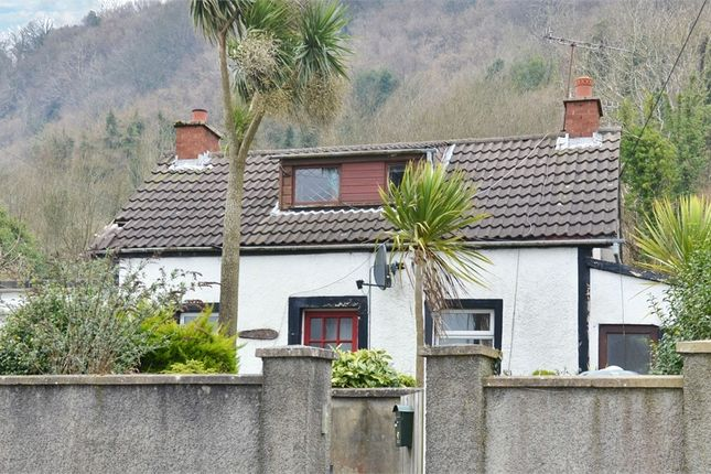 Thumbnail Detached house for sale in Bank Road, Larne, County Antrim