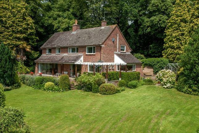 Thumbnail Detached house for sale in West Monkton, Taunton
