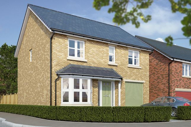"Thumbnail Detached house for sale in ""The Rosebury"" at High Gill Road, Nunthorpe, Middlesbrough"