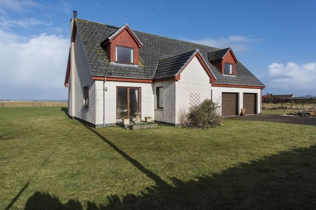 Thumbnail Detached house for sale in Brough, Thurso, Caithness, Highland
