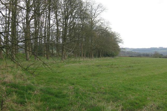 Thumbnail Land for sale in Lot 4 - Manor Farm, Dethick, Matlock