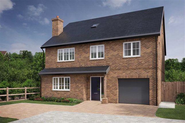 Thumbnail Detached house for sale in Burnham Grange, Welwyn, Hertfordshire