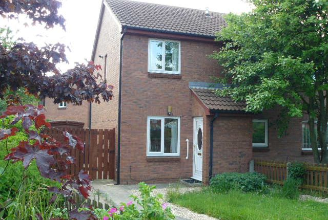 Thumbnail Semi-detached house to rent in Mapleton Close, Redcar