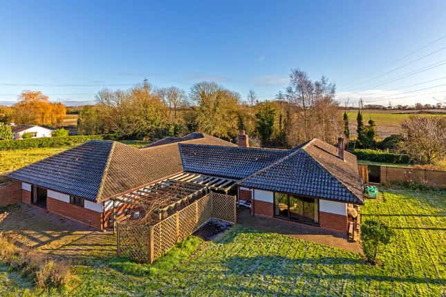 Thumbnail Detached bungalow for sale in Ginns Road, Stocking Pelham, Buntingford