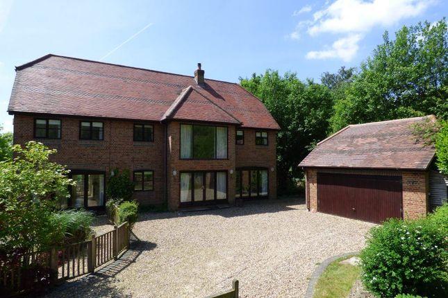 Thumbnail Property to rent in Ambarrow Lane, Sandhurst