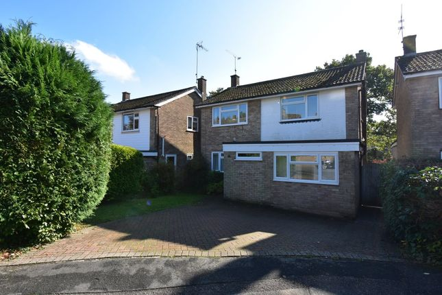 Thumbnail Detached house to rent in Sefton Chase, Crowborough
