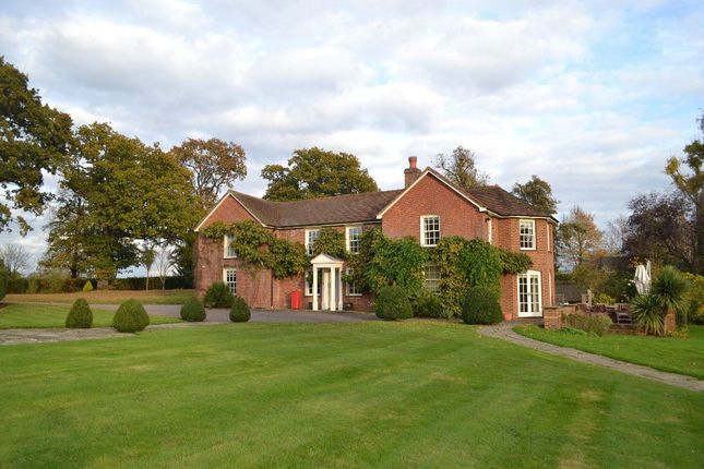 Thumbnail Property to rent in Knowle Lane, Cranleigh