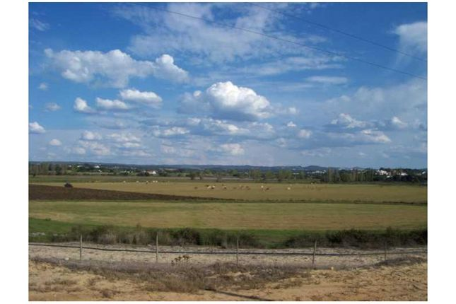 Thumbnail Land for sale in Melides, Comporta, Alcácer Do Sal