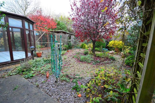 Garden of Greenway, Kibworth Beauchamp, Leicester LE8