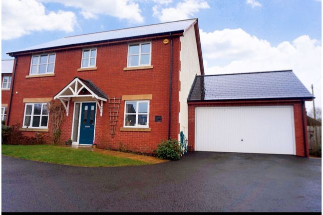 Thumbnail Detached house for sale in Westford, Wellington
