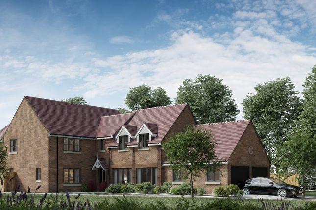 Thumbnail Detached house for sale in Days Lane, Biddenham