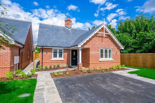 Thumbnail Detached bungalow for sale in Anchor Close, Upper Street, Stratford St. Mary, Colchester