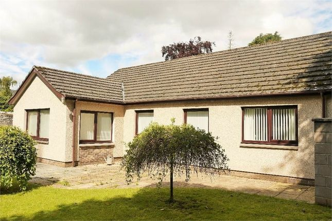 Thumbnail Detached bungalow for sale in Lour Road, Forfar, Angus