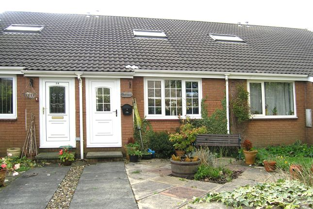 1 bed bungalow to rent in Willow Close, Morpeth NE61