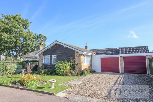 Thumbnail Bungalow for sale in South Close, Beccles