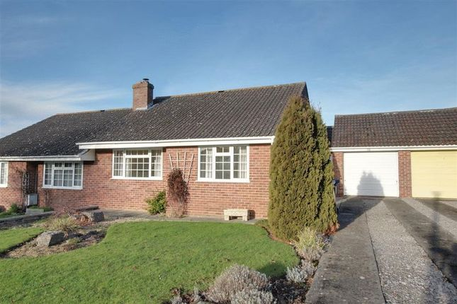 Thumbnail Semi-detached bungalow to rent in The Dutts, Dilton Marsh, Westbury