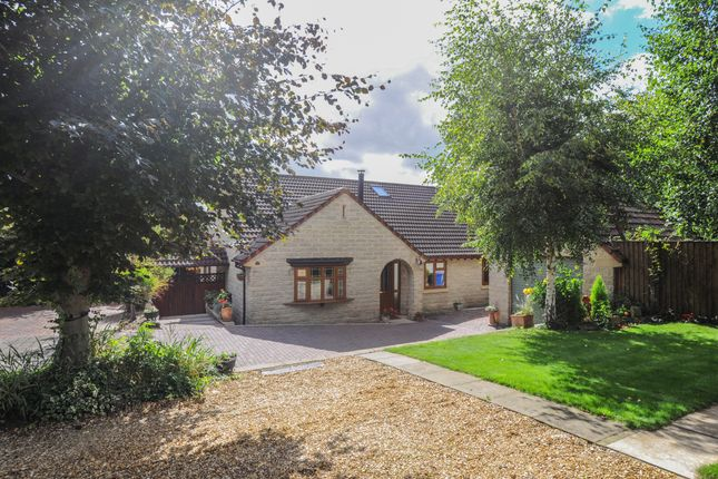 Thumbnail Detached bungalow for sale in Langer Lane, Chesterfield